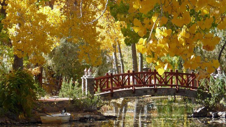 North Valley Reno Nevada Short Sale Homes